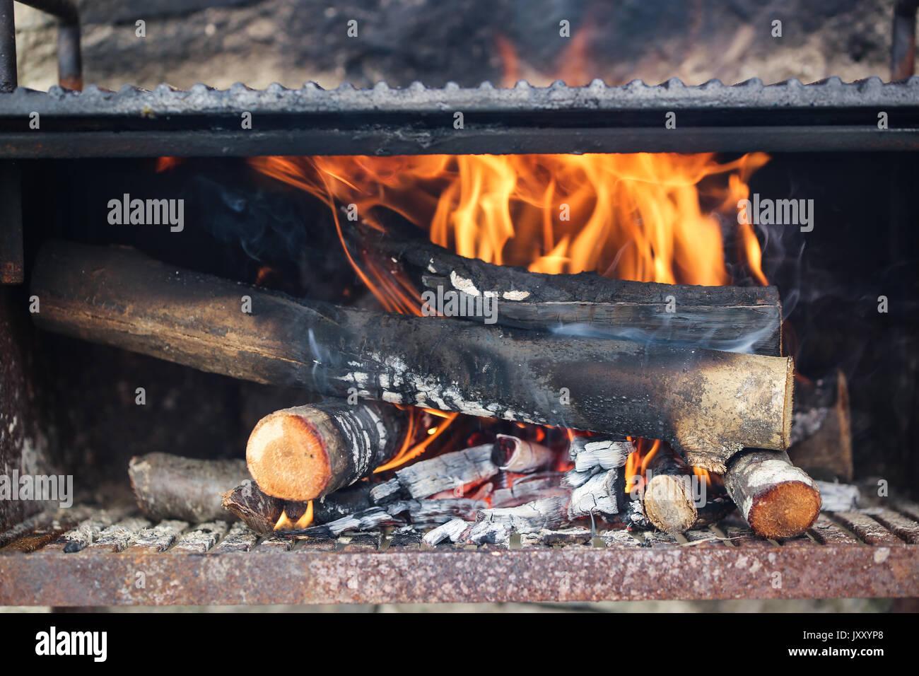 Firewood. - Stock Image