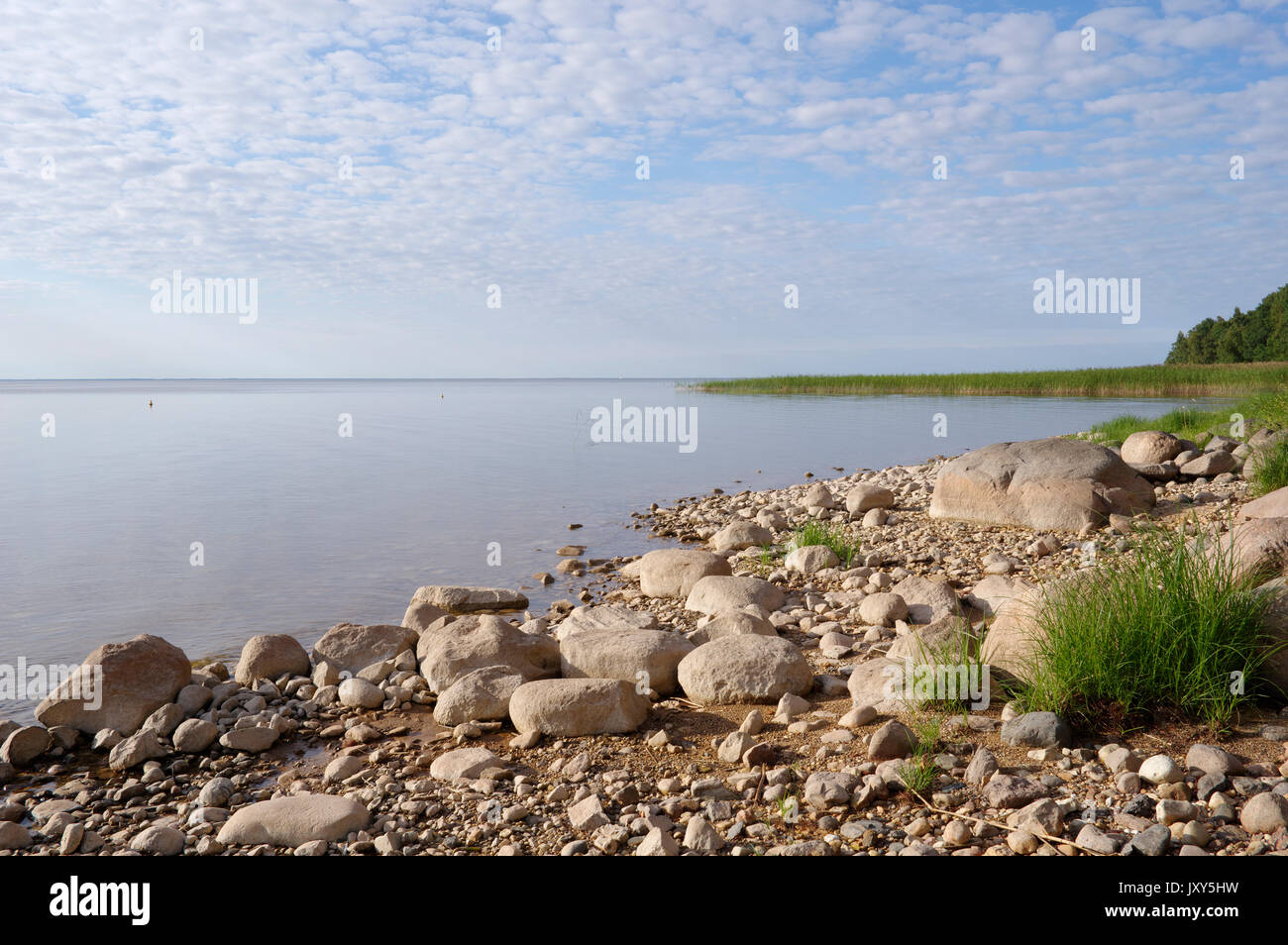 View to the Lake Võrtsjärv, Estonia 16.08.2017 - Stock Image