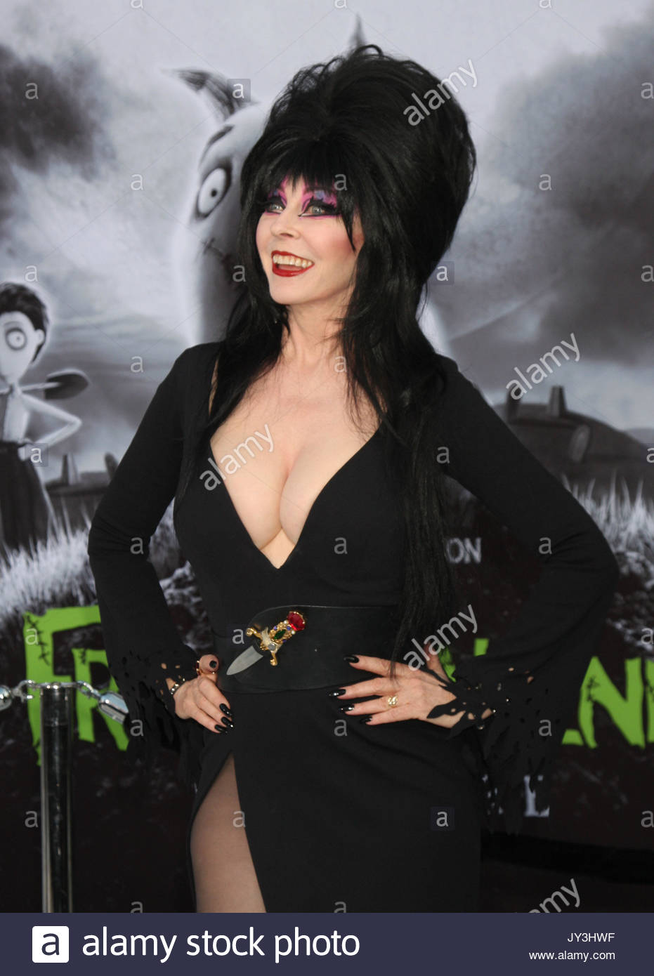 Cassandra Peterson Elvira Stock Photos & Cassandra ...