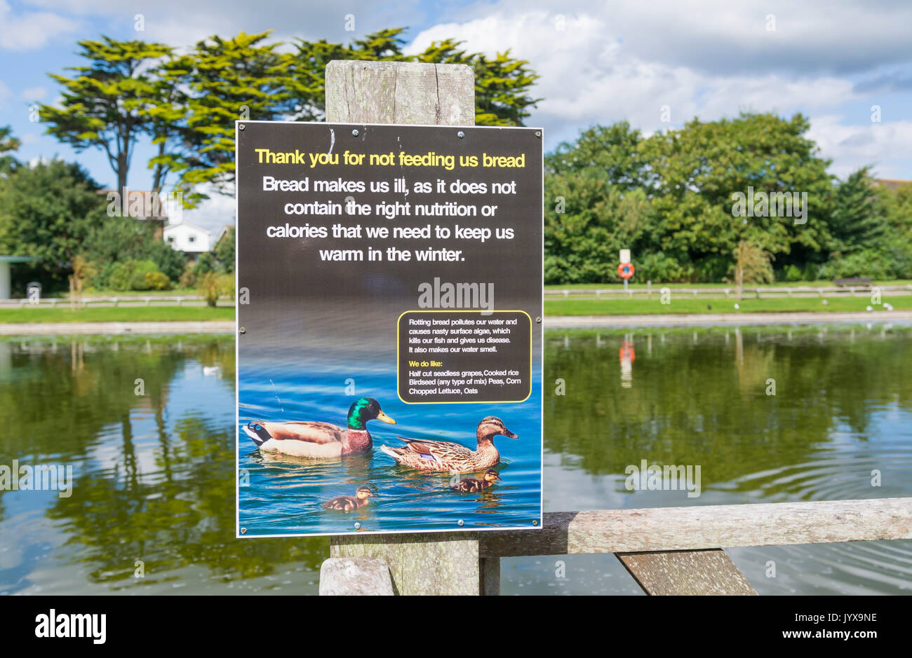 Sign at a lake asking people not to feed bread to ducks, as it makes them ill. Stock Photo