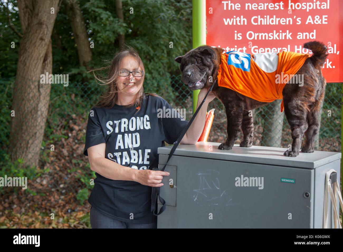 Southport, Lancashire, UK. 22nd Aug, 2017. Stephanie at GMB protests against NHS cuts outside Southport and Formby - Stock Image