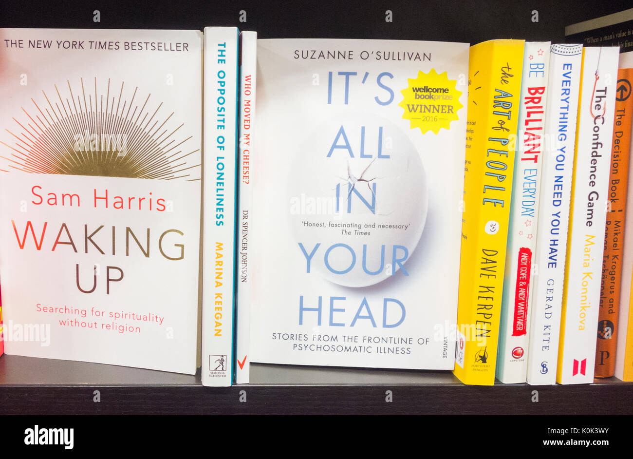self help book Our nation has a sort of embarrassing and very consuming addiction: self-help books from the power of now to the artist's way to the.