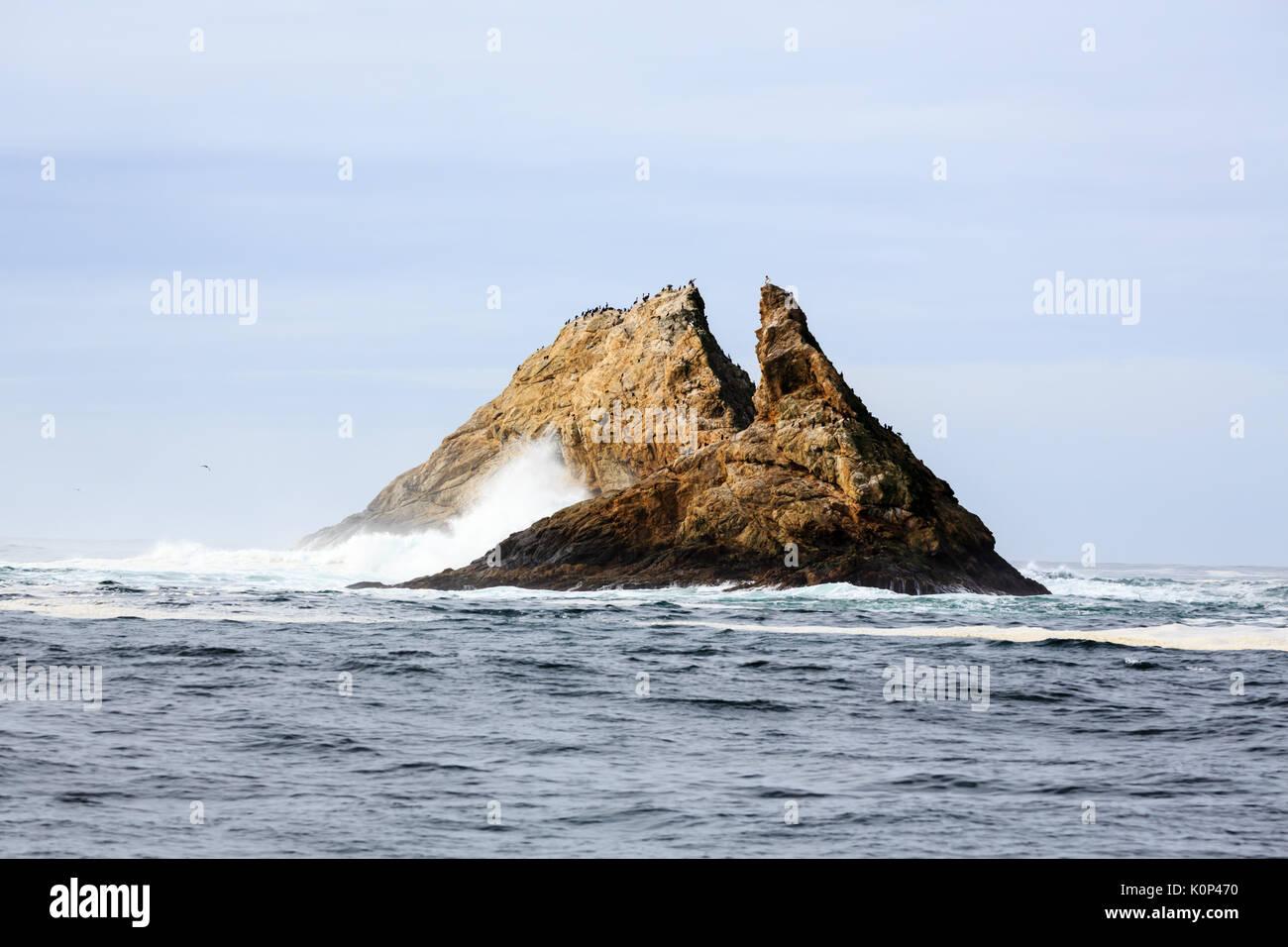 meet sea island singles Home meet the doctor meet the associate doctors  sea island dentistry pc | 102 sea island parkway suite j, ladys island, sc 29907 .