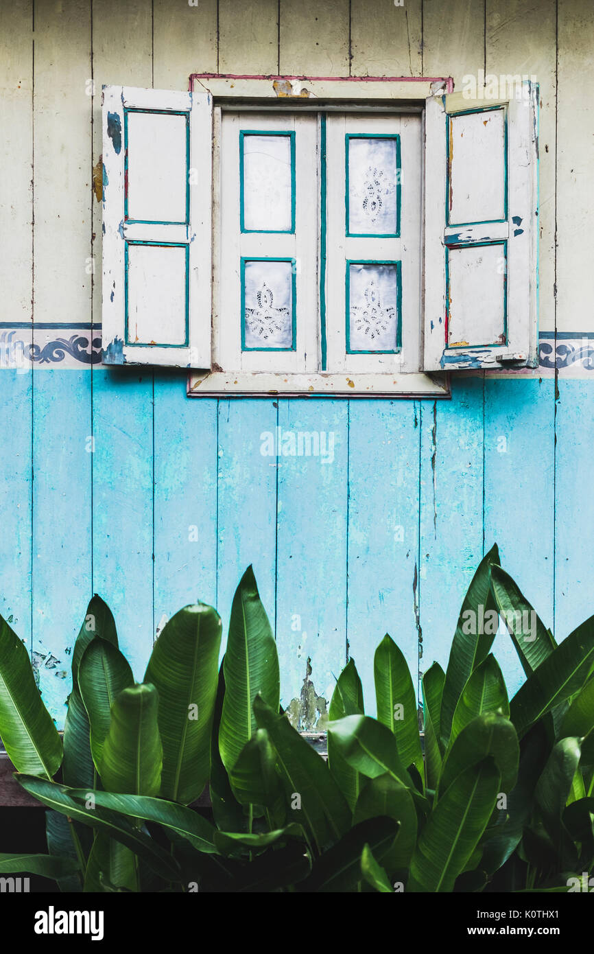 Old vintage wooden window with shutters and curtains on traditional Indonesian style house. Textured painted wall - Stock Image