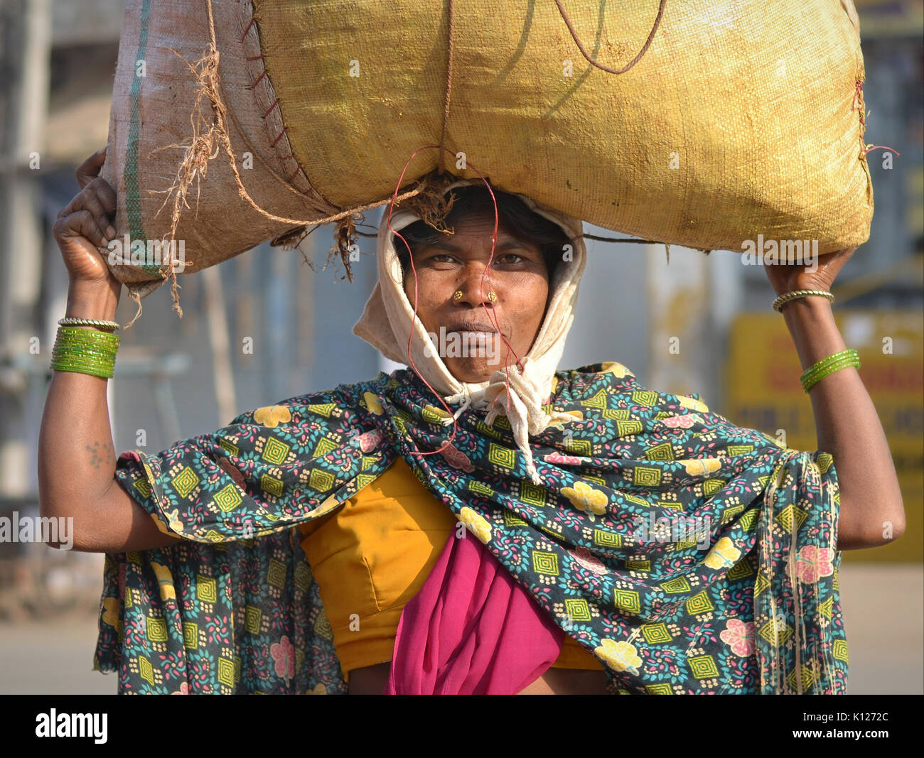 Middle-aged Indian Adivasi woman (tribal woman) with two distinctive golden nose studs, carrying on her head a heavy - Stock Image