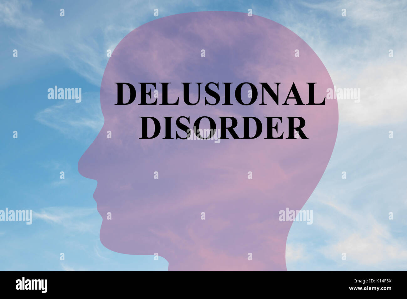 shutter island and delusional disorder