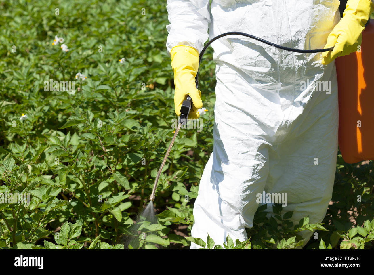Spraying Insecticides Stock Photos Spraying Insecticides Stock Images Alamy
