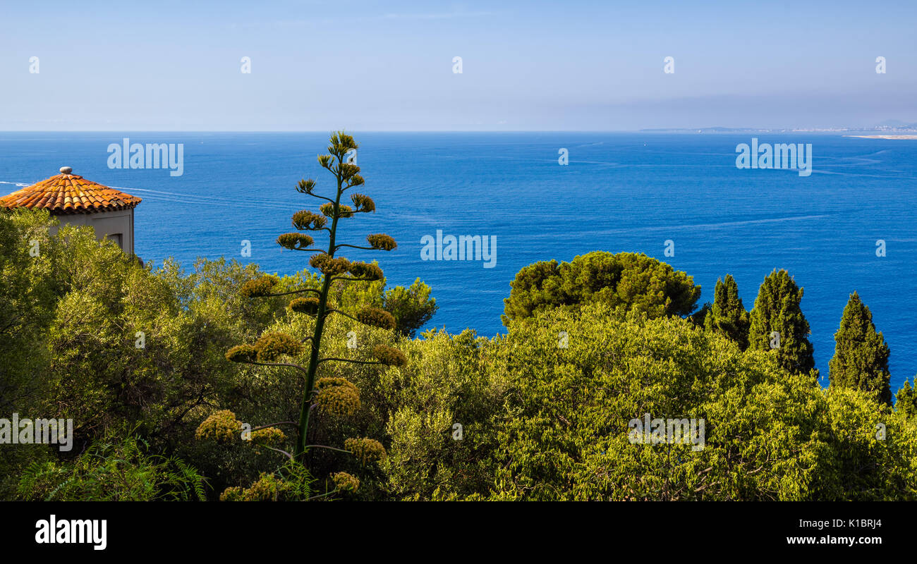 Mediterranean Sea and trees in Nice. Panoramic elevated view of the French Riviera, Cote d'Azur, Alpes Maritimes, - Stock Image