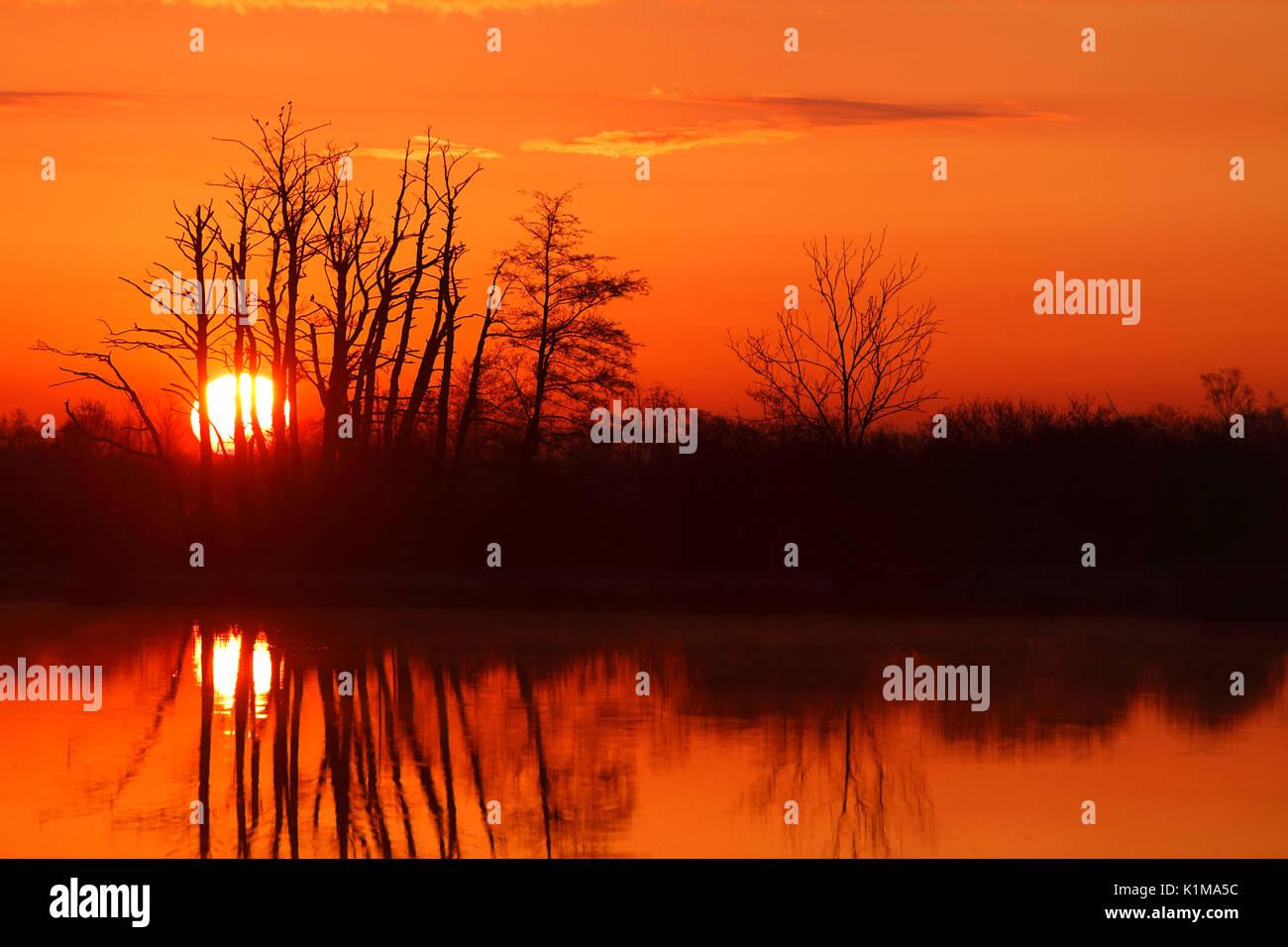 Sunrise over the Peene, natural park river Flußlandschaft Peenetal, Mecklenburg-Western Pomerania, Germany - Stock Image