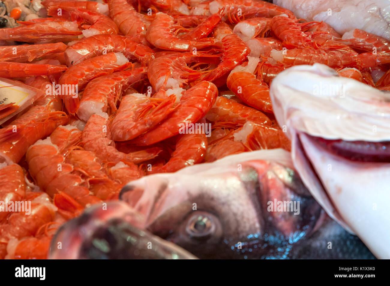 Chioggia Fish Market Stock Photos Chioggia Fish Market