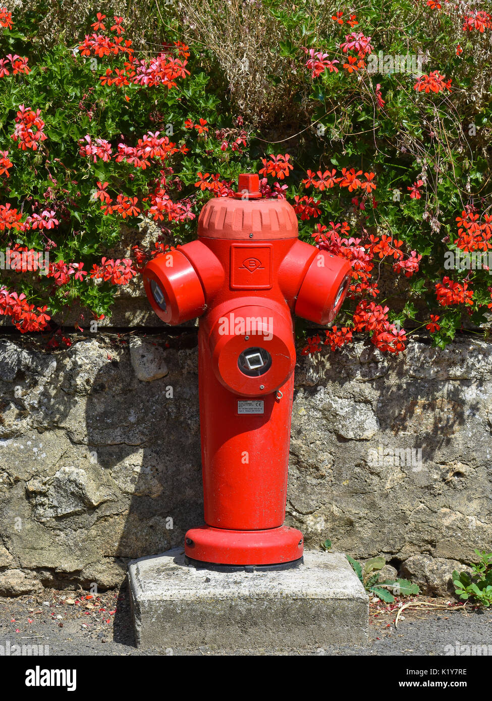Red fire hydrant and geraniums, France. - Stock Image