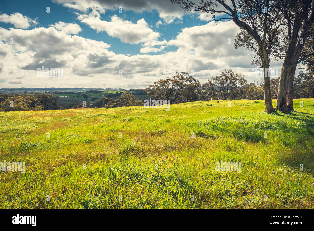 Gumtree stock photos gumtree stock images alamy for Adelaide hills landscape