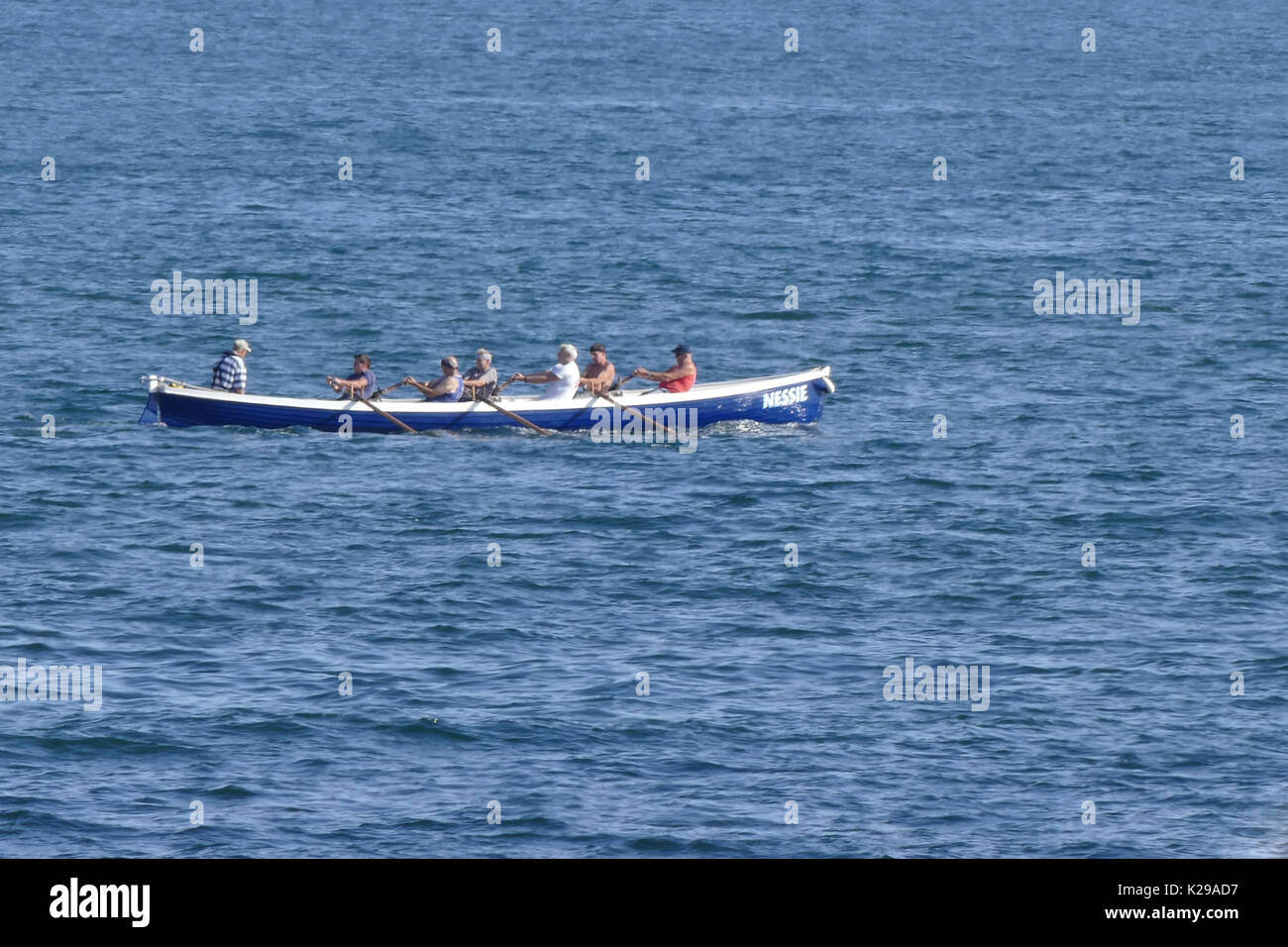 rowing a gig - Stock Image
