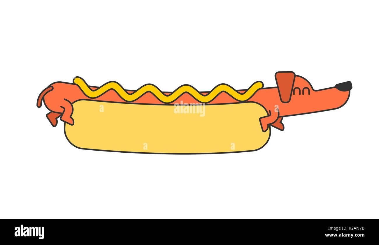 Dachshund In Hot Dog Bun