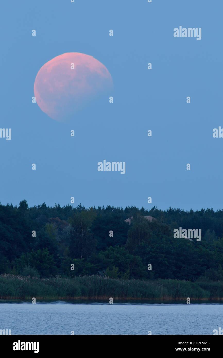 Partial lunar eclipse on 07/08/2017, Biosphere Reserve Mittlere Elbe, Saxony-Anhalt, Germany - Stock Image