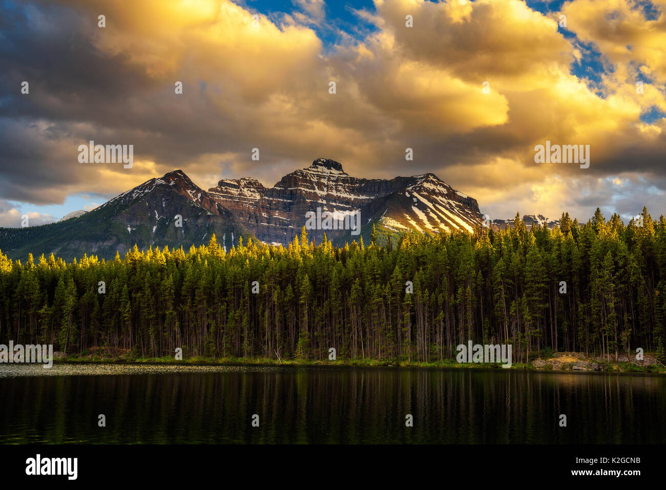 Scenic sunset over deep forest along the Herbert Lake in Banff National Park, with snow-covered peaks of canadian - Stock Image