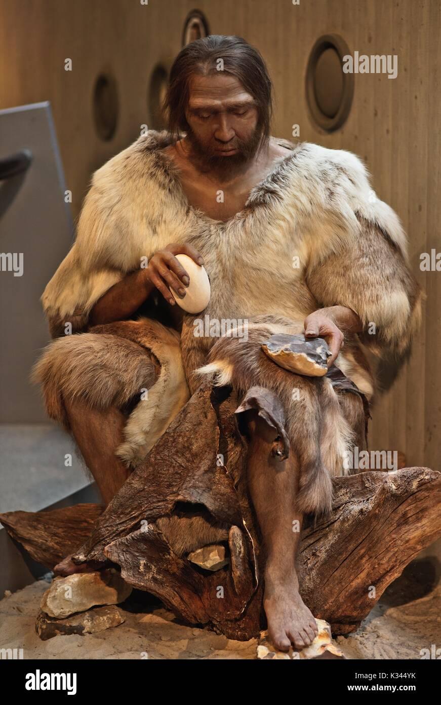 neanderthal-museum-figures-K344YK.jpg