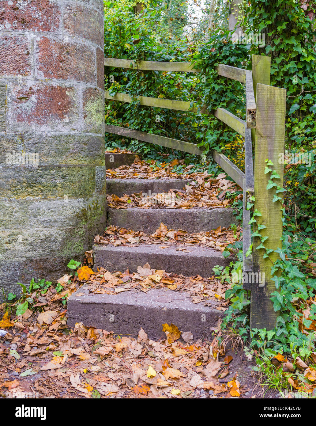 leaves-on-the-ground-on-old-stone-steps-