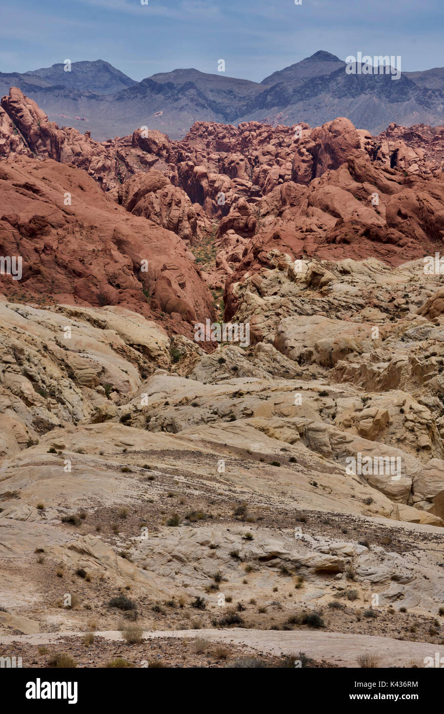 View at Valley of Fire State Park - Stock Image