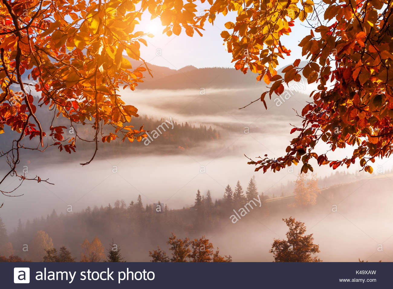 Foggy dawn in the autumn in the mountains - Stock Image