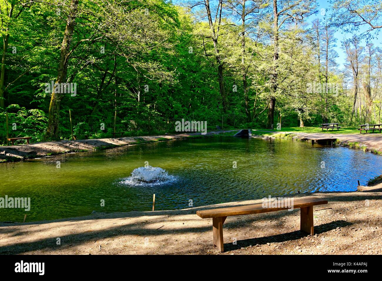 Trout pond stock photos trout pond stock images alamy for Stocked fishing ponds near me