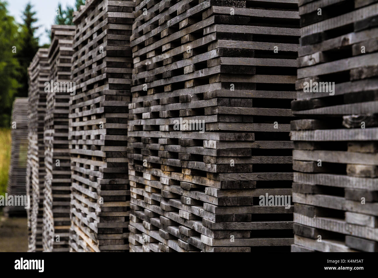 Pile of decayed lumber stacked on top each other - Stock Image