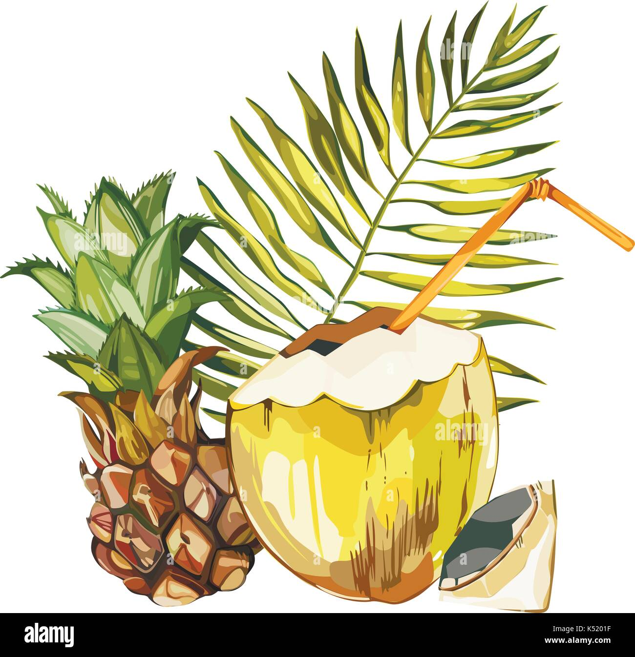 coconut tree flower stock photos amp coconut tree flower