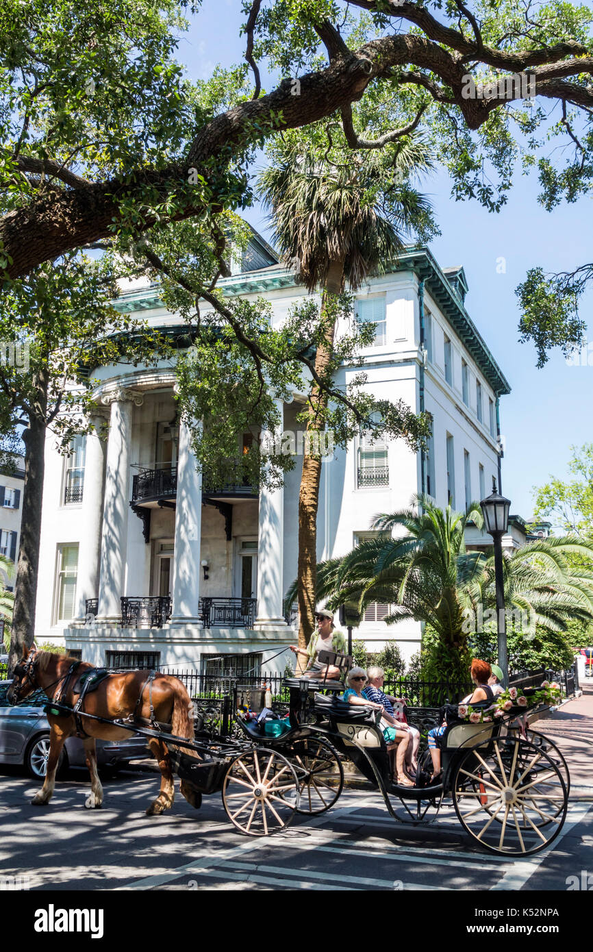 Savannah Georgia historic district Chippewa Square Philbrick-Eastman House horse carriage - Stock Image
