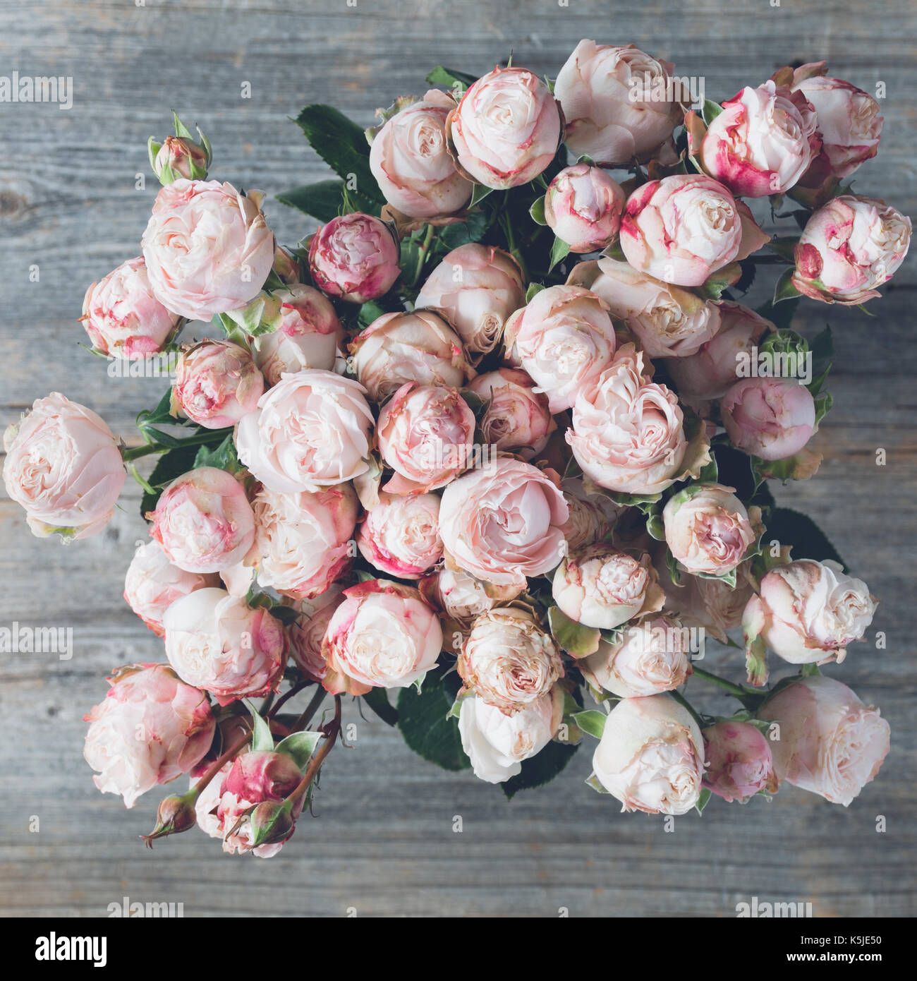 pink shrub roses bouquet of wedding flowers on wooden background stock photo royalty free image. Black Bedroom Furniture Sets. Home Design Ideas