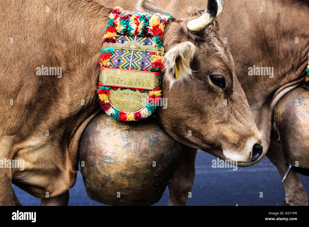 Swiss Cow Bells Stock Photos Amp Swiss Cow Bells Stock