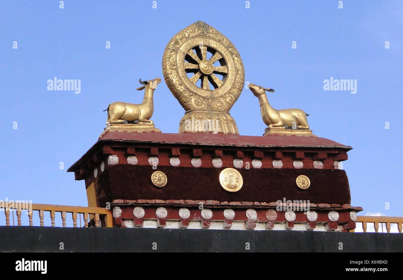 Dharmachakra stock photos images alamy