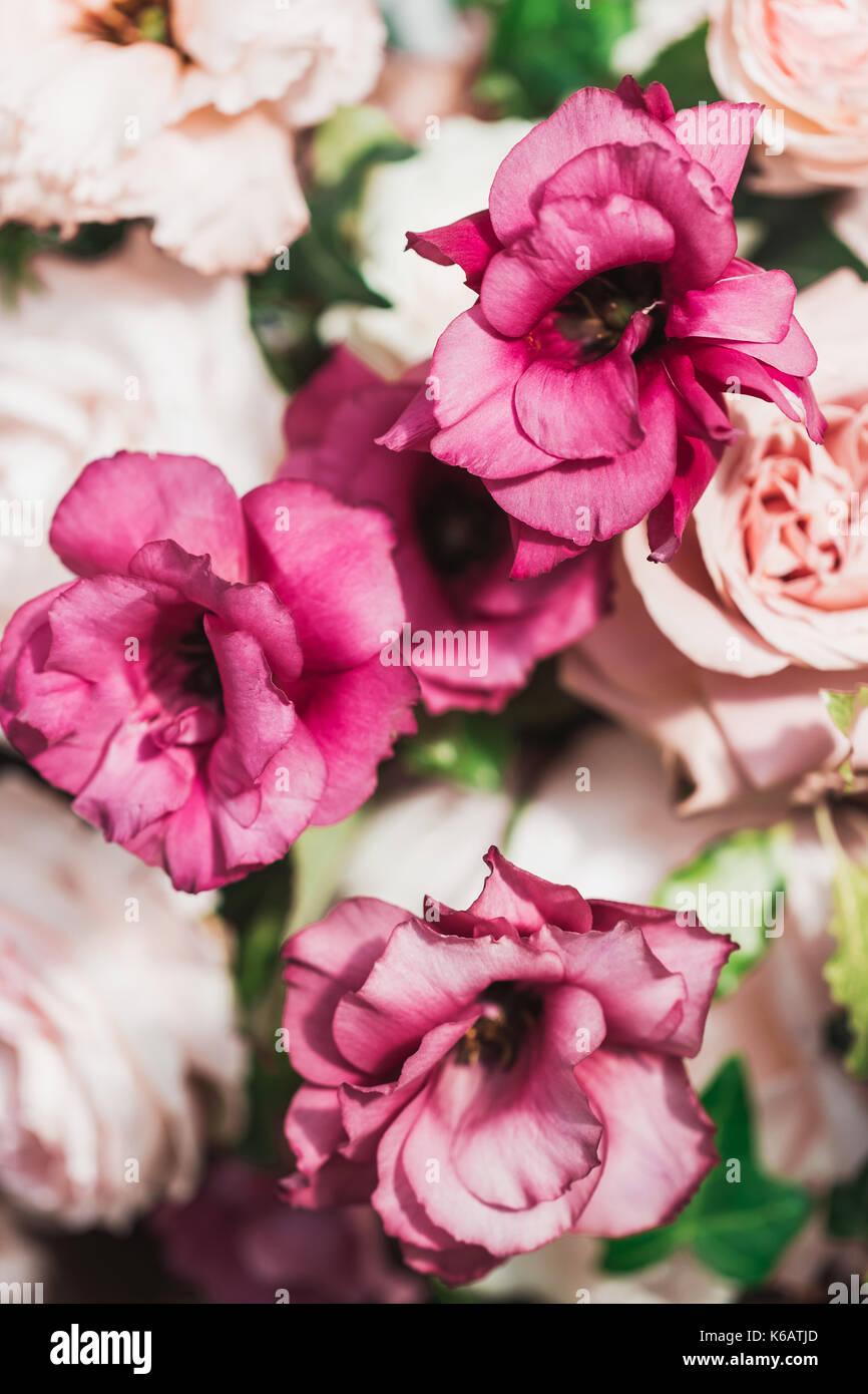 Beautiful wedding bouquet - Stock Image
