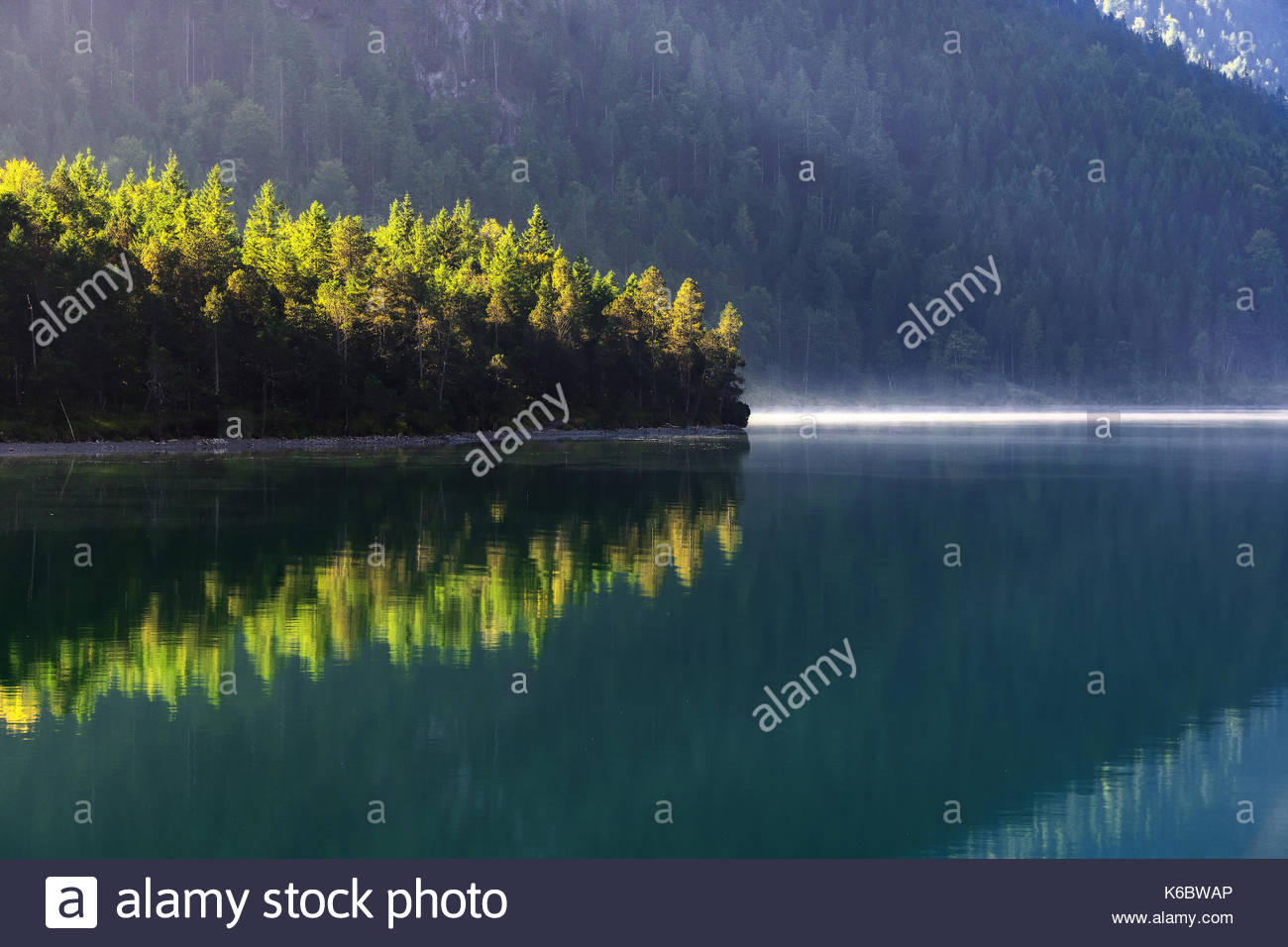 Autumn season theme. Detail of coloured forest. Sun beam shines on trees. Plansee, Tyrol, Austria. - Stock Image