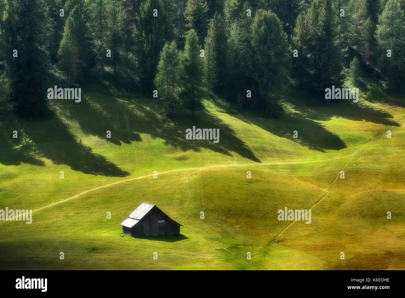 mountain hut on the green meadow with pine forest in the background and shadow - Stock Image