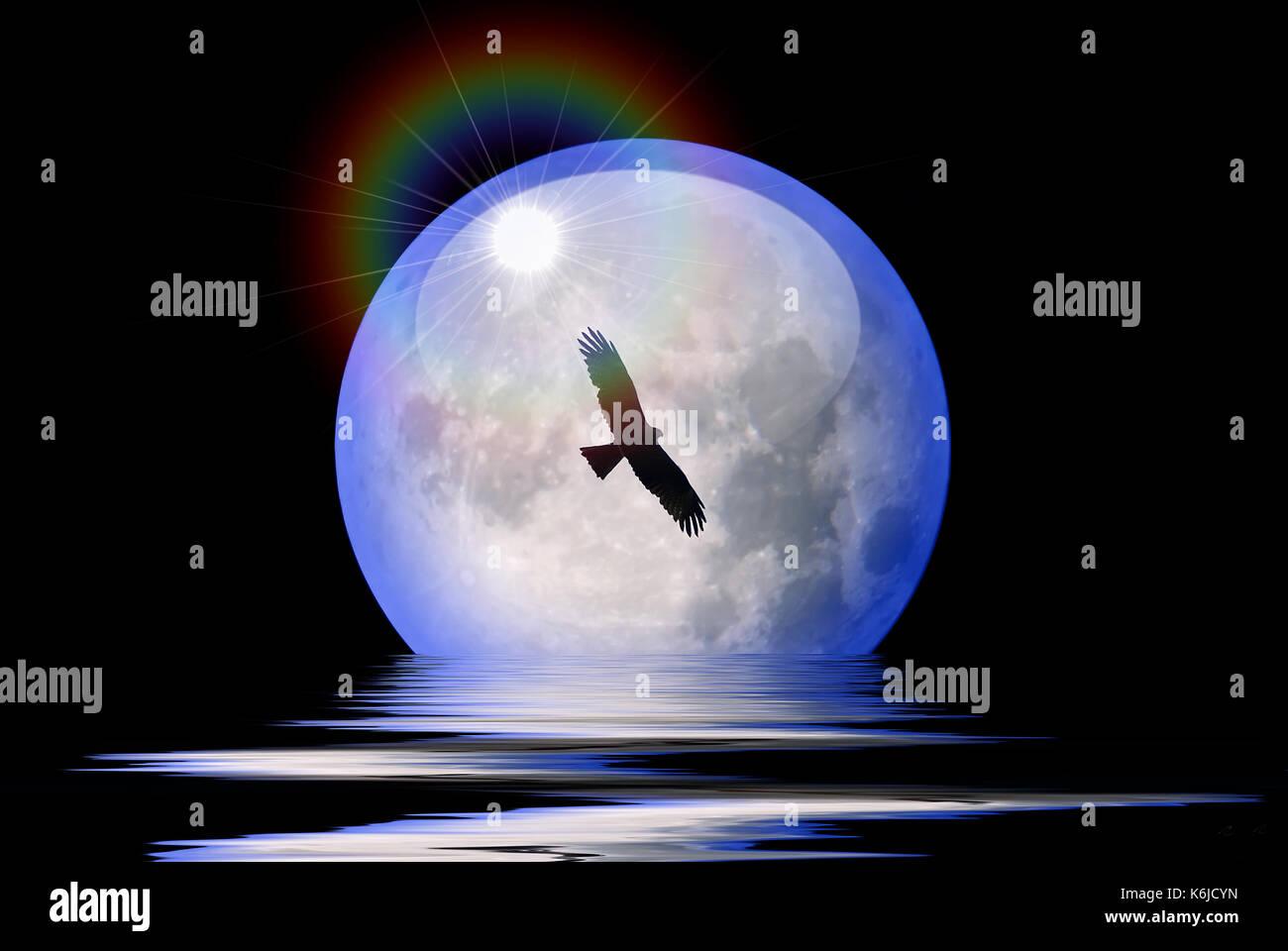 illustration-silhouette-of-bird-flying-i