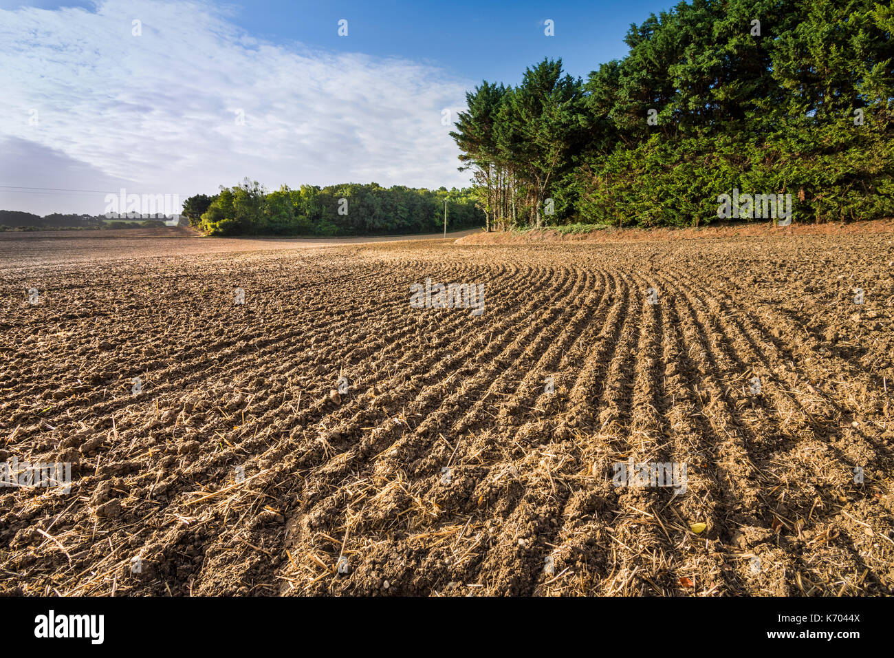Newly harrowed farm field, France. - Stock Image
