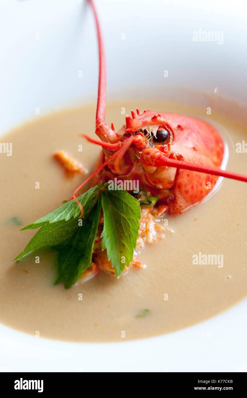 Lobster Bisque Stock Photos & Lobster Bisque Stock Images - Alamy