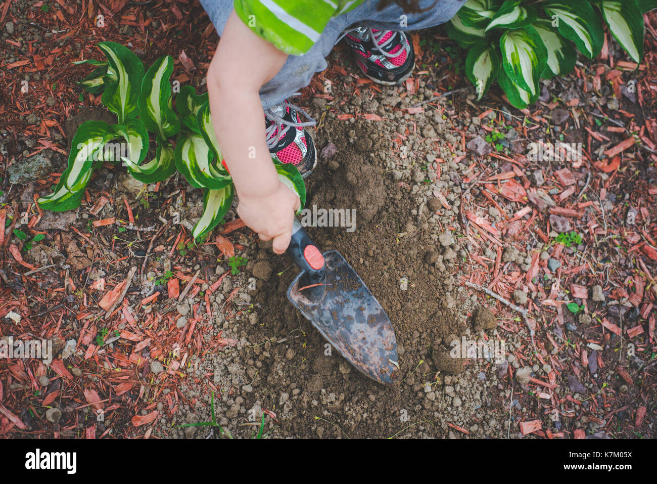 A little girl digs with a spade in a garden. - Stock Image
