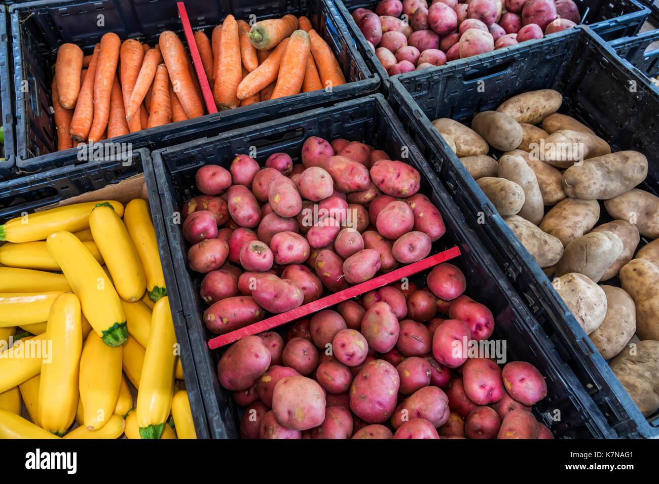 North Myrtle Beach South Carolina SC Little River Farmers Market carrot squash potatoes vegetables - Stock Image