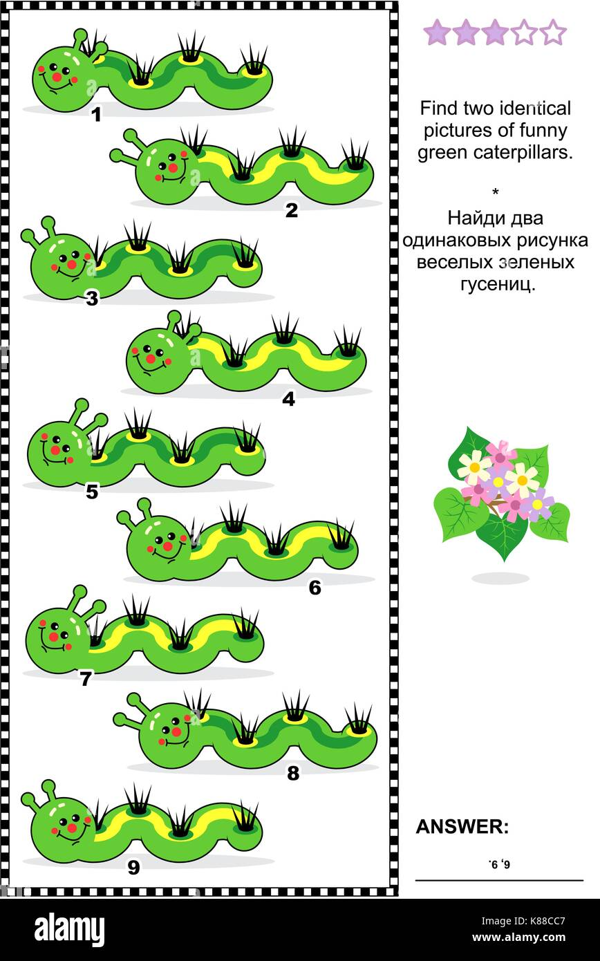 Spring or summer visual puzzle: Find two identical pictures of funny green caterpillars. Answer included. - Stock Image
