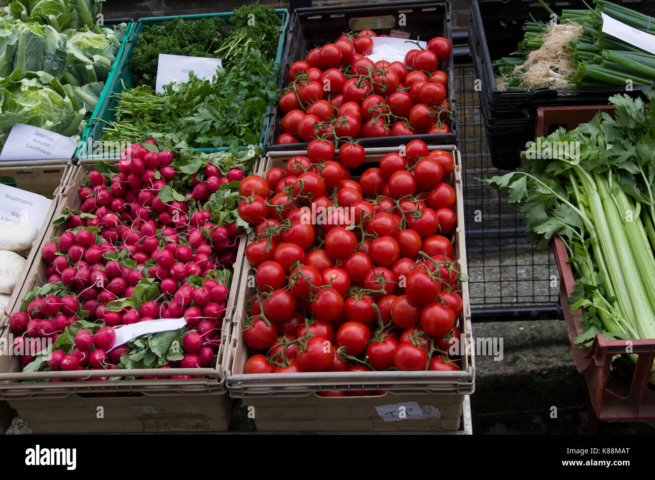 Tomatoes, radishes, celery and other fresh produce on sale in a market in London - Stock Image