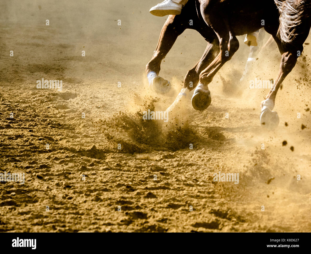 horse racing details of galloping horses legs on hippodrome - Stock Image