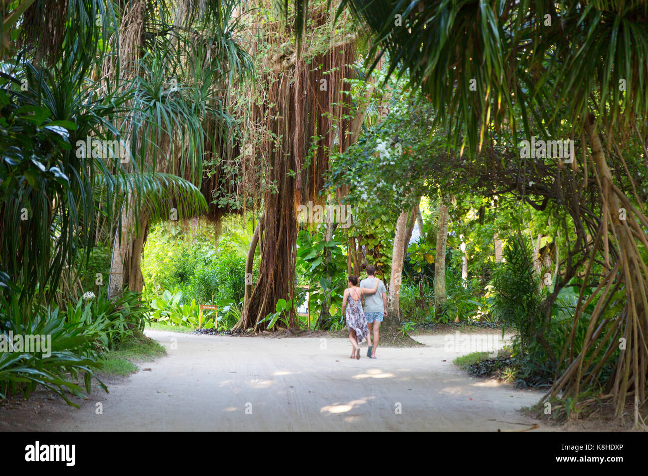 Maldives couple on honeymoon walking, Kuramathi Resort Hotel, the Maldives, Asia - Stock Image
