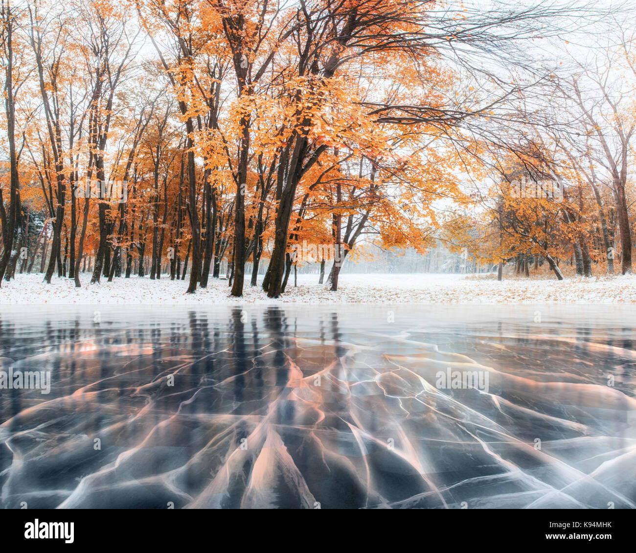 October mountain beech forest with first winter snow and blue ice and cracks on the surface of the ice. Winter. - Stock Image