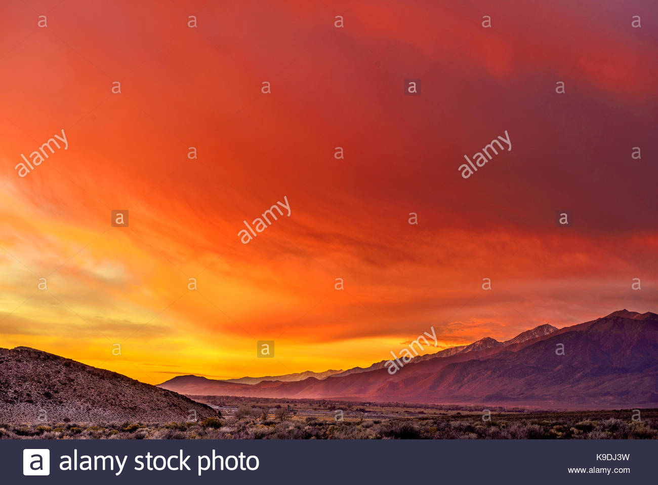 Amazing Dawn Color, looking South from the Volcanic Tablelands toward Bishop, Inyo National Forest, Inyo County, - Stock Image
