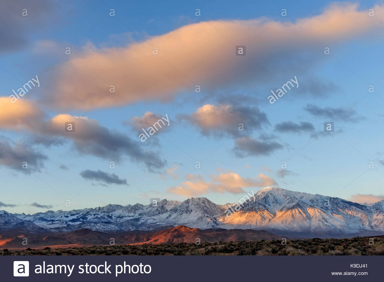 Sierra Nevada Range from the Volcanic Tablelands, Inyo National Forest, Inyo County, Caifornia - Stock Image