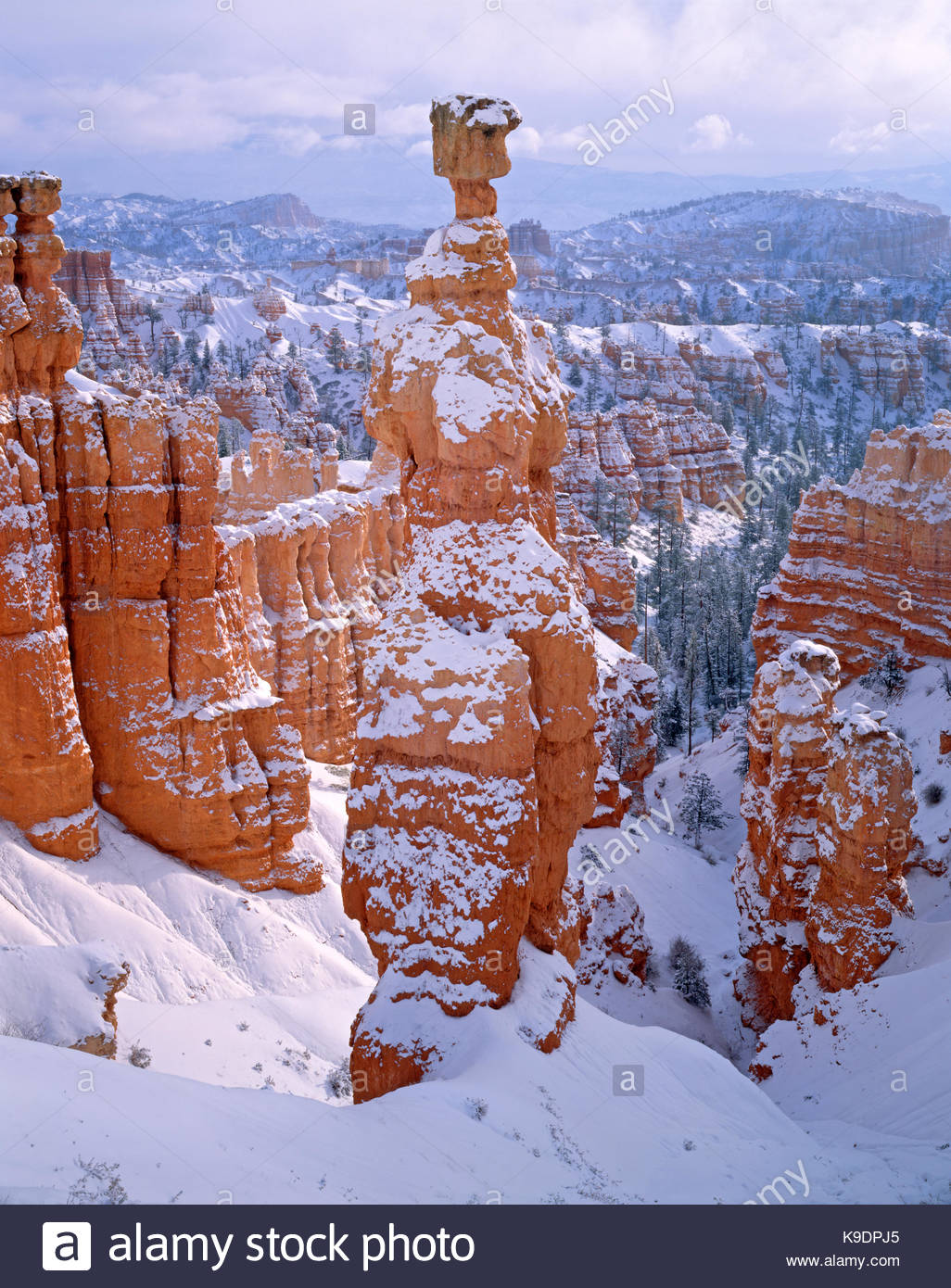 Thor's Hammer after Snowstorm, Bryce Canyon National Park, Utah - Stock Image