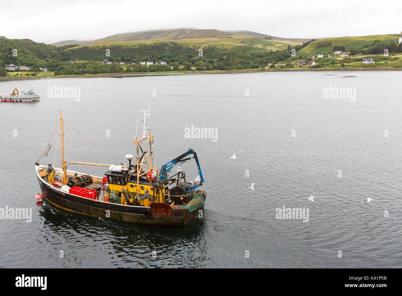 Fishing boat arriving to Uig Harbour with seagulls flying around, Trotternish peninsula, Isle of Skye, Scotland. - Stock Image