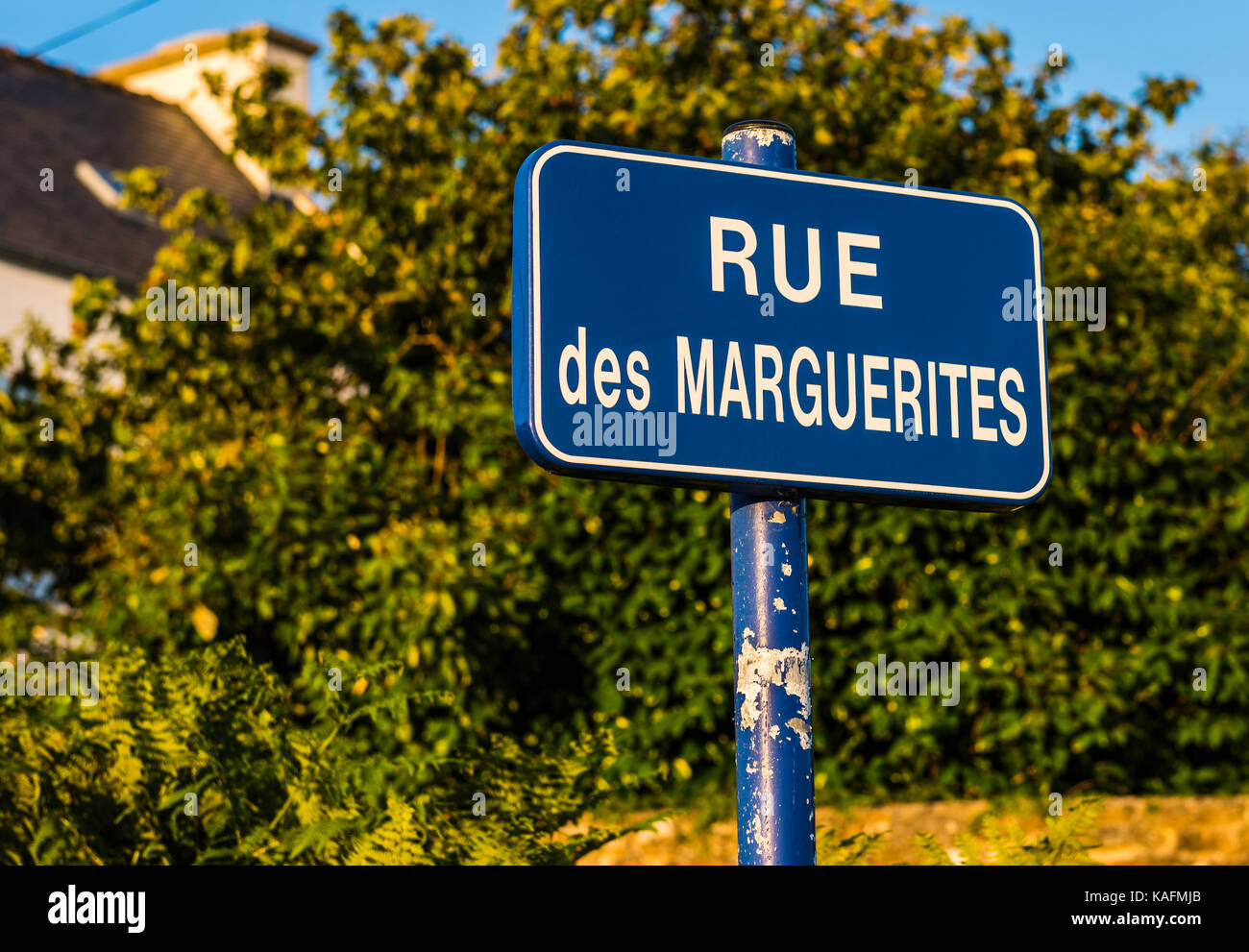 Road sign in evening sunlight, Brittany, France - Stock Image