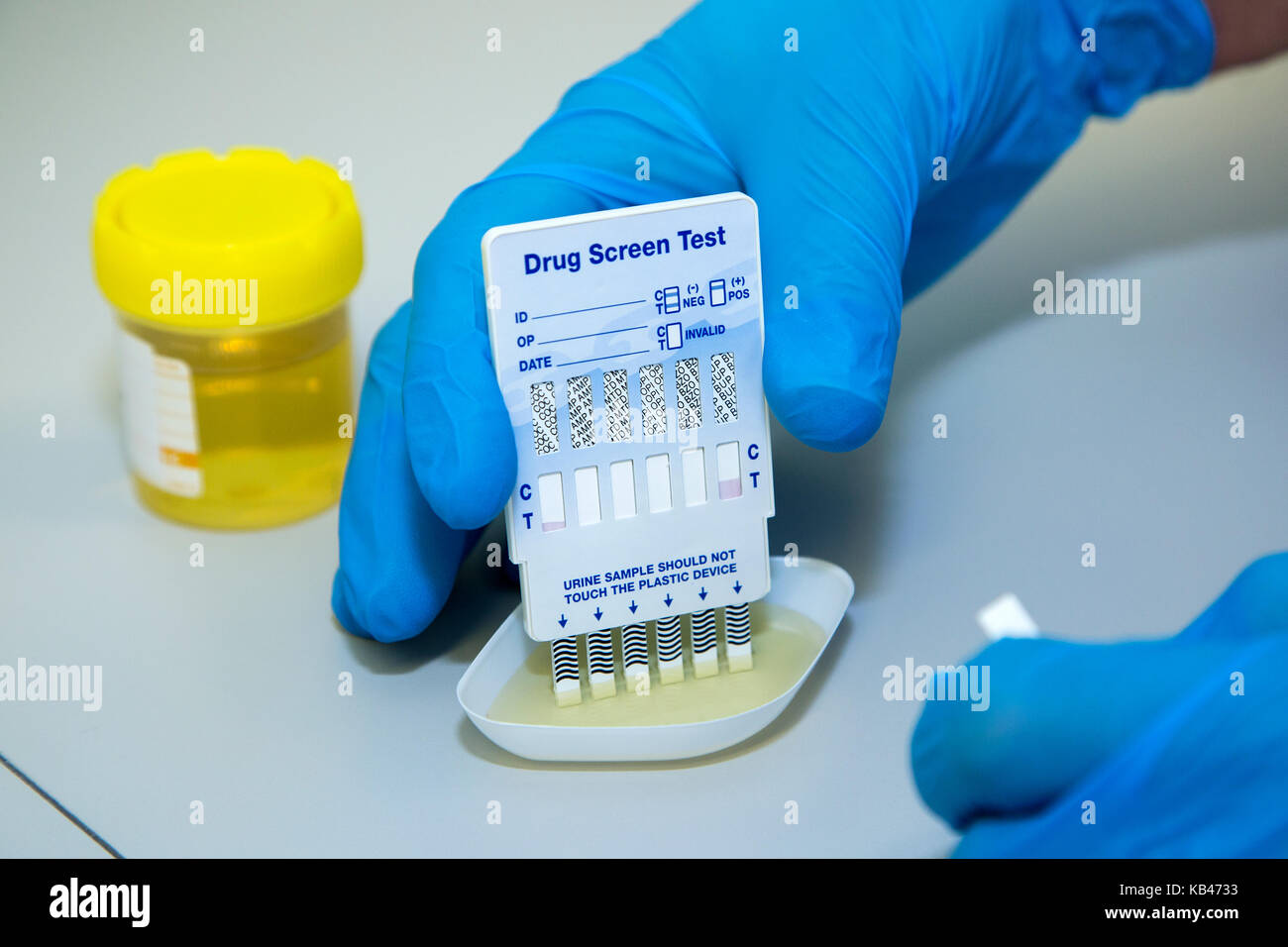 Steal this urine test download